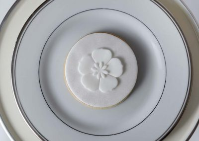 tatiana koruk - cookies - 08